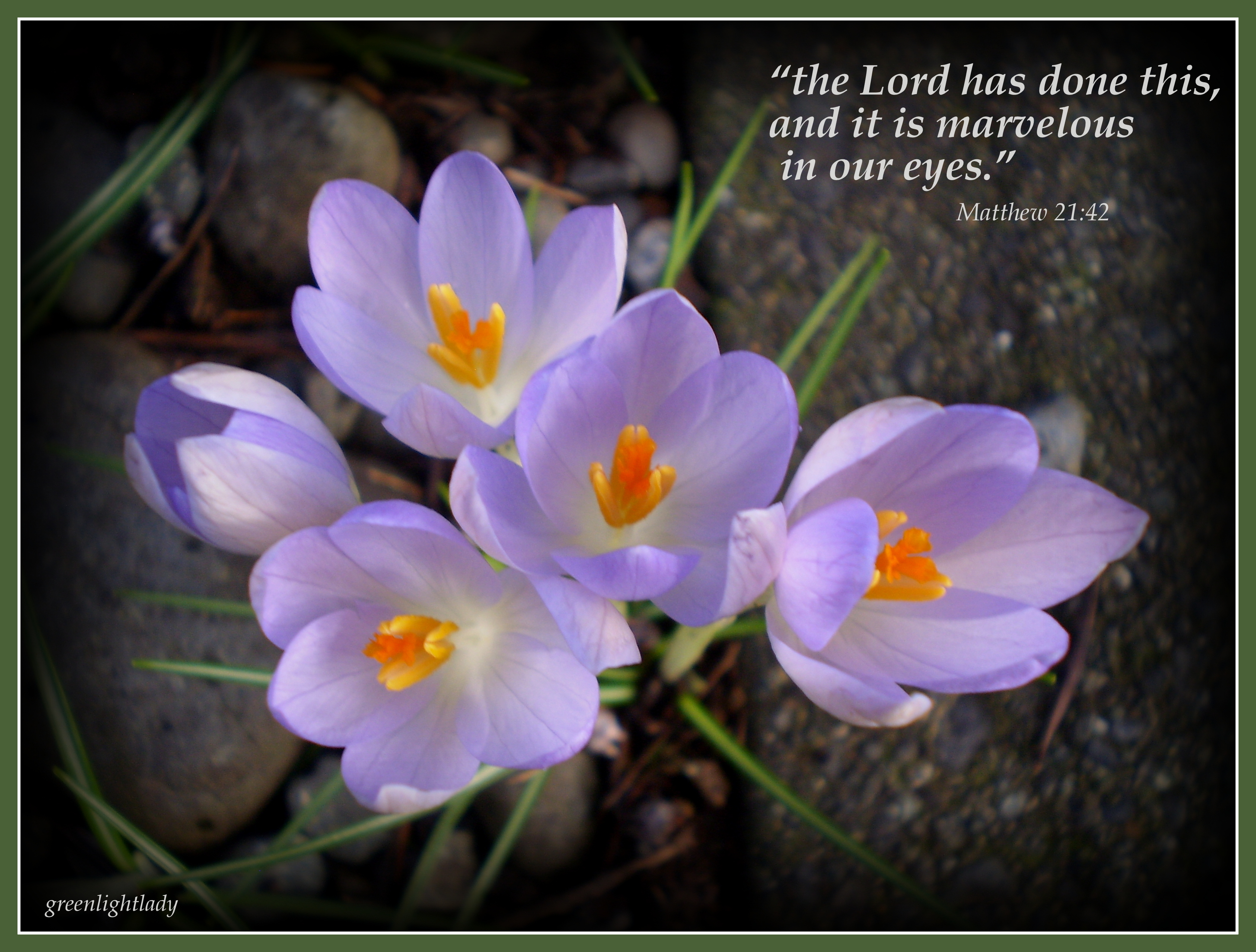 Images of Flowers With Bible Verses Tags Bible Verses