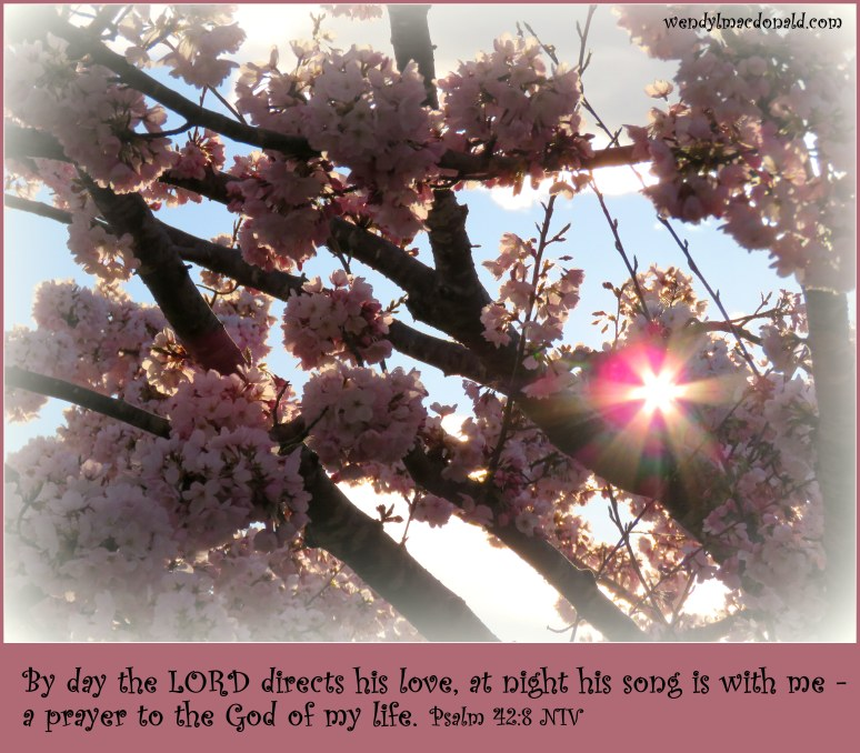 Psalm 42:8 NIV By day the LORD directs his love Wendy L. Macdonald